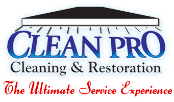 Clean Pro Cleaning & Restoration Sticky Logo