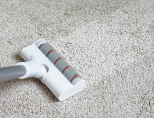 Carpet Care Mistakes