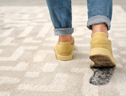 Carpet Protection Tips