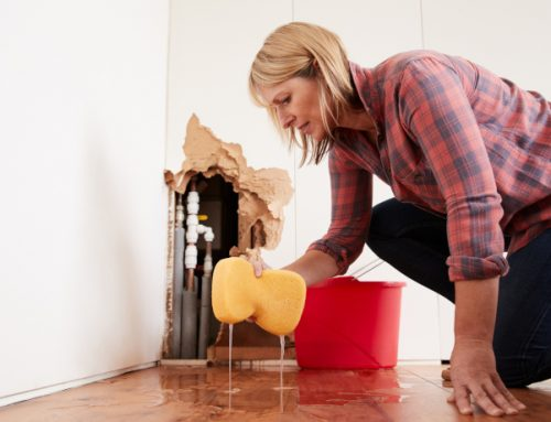 Don't Let Water Damage Ruin Your HOLIDAYS