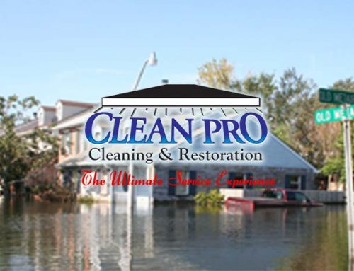 Clean Pro Emergency Services