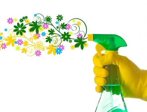 Why do we spring Clean?